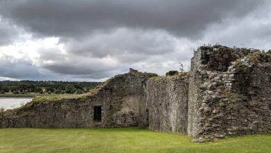 Photo of Jakich krewniaków miał język używany w średniowieczu przez wikingów?
